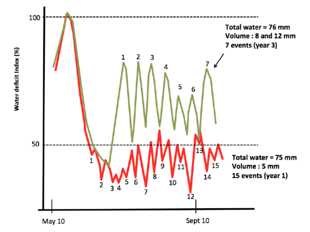 irrigation frequency
